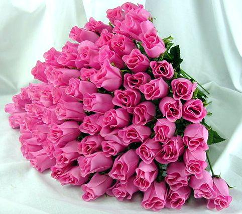 عکس گل تولدت مبارک